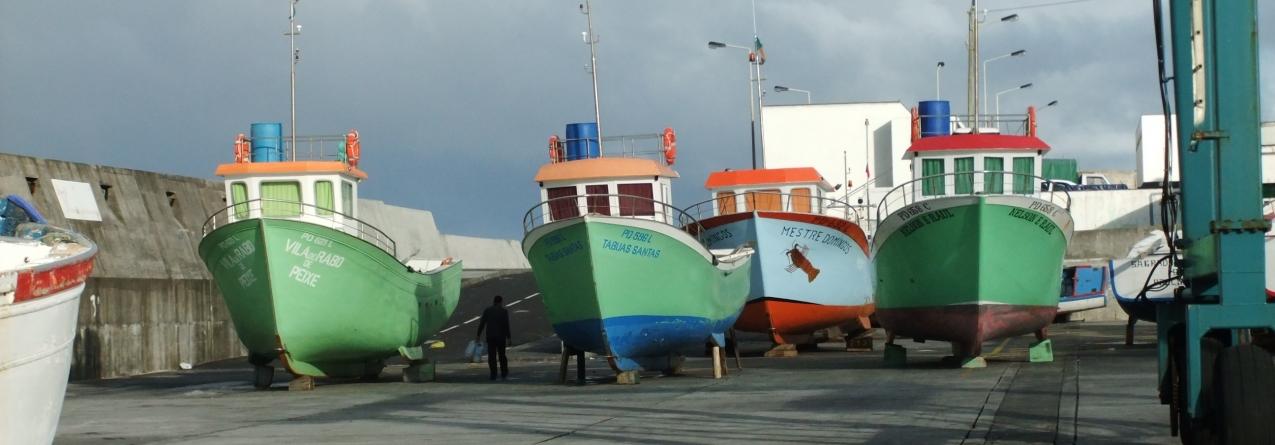 Assembleia Geral da Porto de Abrigo condena política do governo