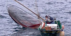 Pescadores de S. Mateus, na Terceira, arrancam em junho com projeto de pesca-turismo
