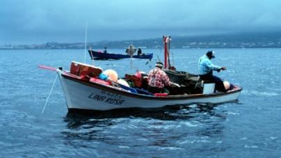 A pesca artesanal nos Açores é mais rentável que a pesca industrial