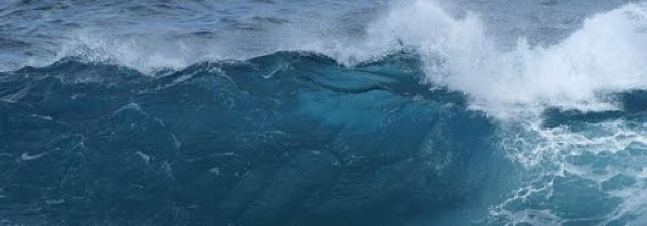 Número de pescadores aumentou 94% desde 2001, o que leva valor per capita a manter-se baixo