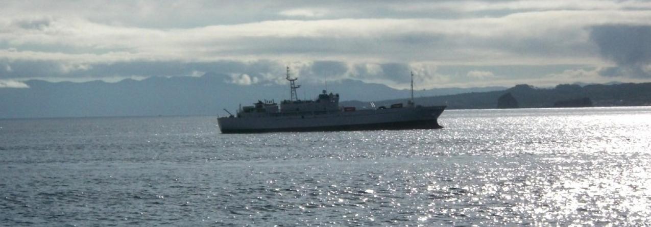 Princesa Guasimara vem ajudar no armazenamento do atum