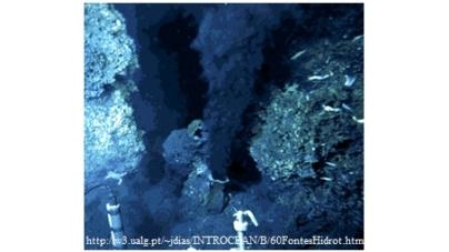 Novos microorganismos descobertos nas fontes hidrotermais