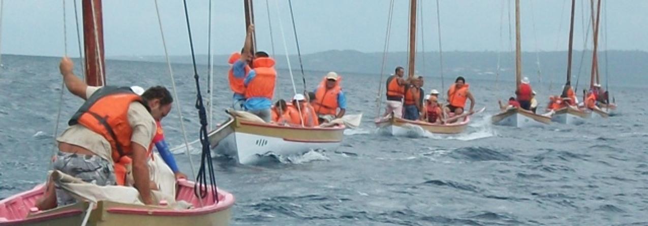 Programa recupera 41 botes baleeiros