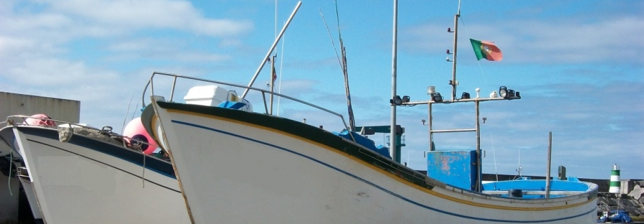 Pescadores sem dinheiro para as multas