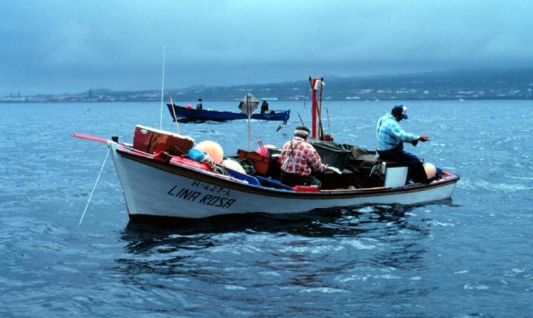 Parlamento recomenda ao Governo medidas de apoio à pesca artesanal