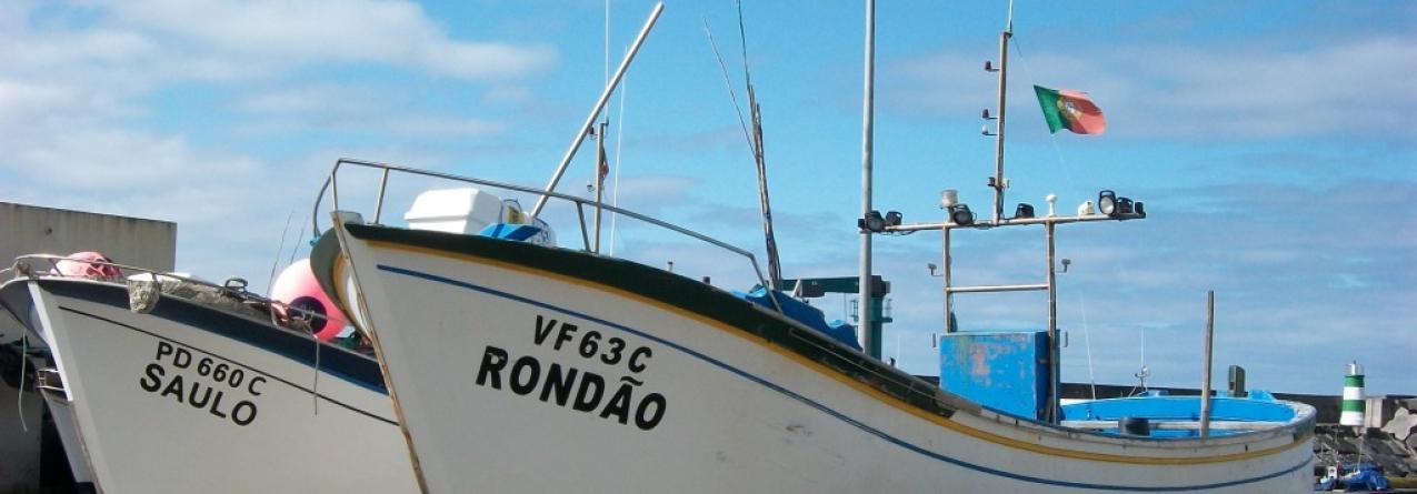Governo Regional garante apoio à instalação de diários eletrónicos em barcos de boca aberta