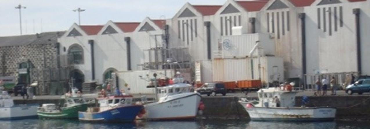 Açores apoiam proposta de Damanaki para o Atlântico