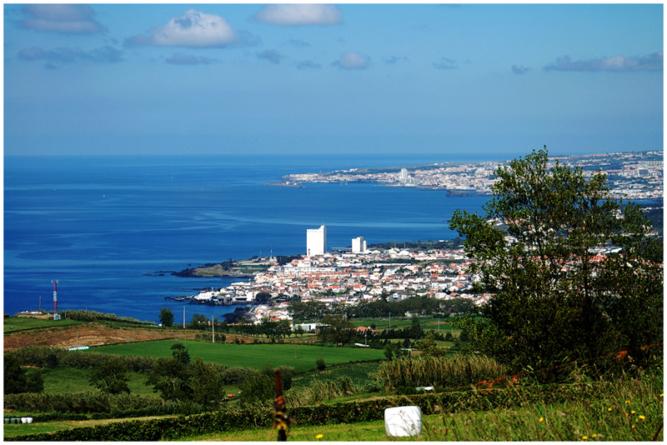 Pescadores reclamam entreposto de frio para Ponta Delgada