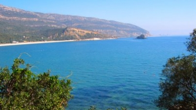 """LPN diz que áreas protegidas marinhas e costeiras """"estão a saque"""""""