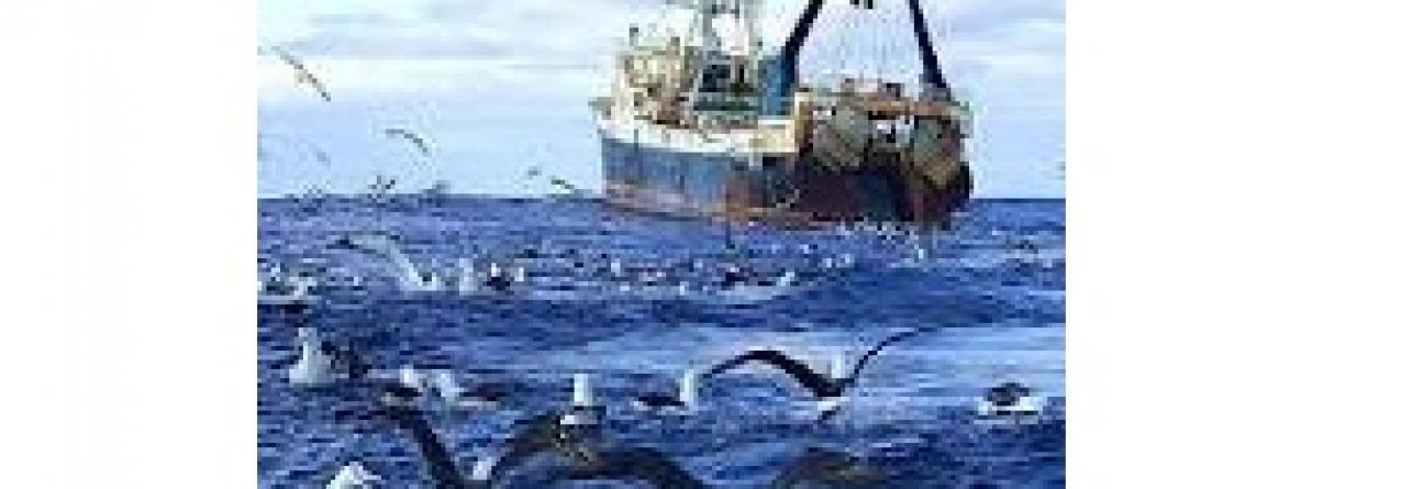 Jerónimo critica oposição e Cavaco por terem reduzido capacidade das pescas