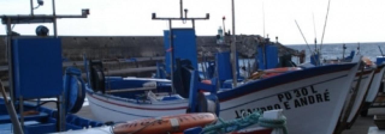 """Açores consideram acordo das pescas """"bom"""" para o arquipélago"""