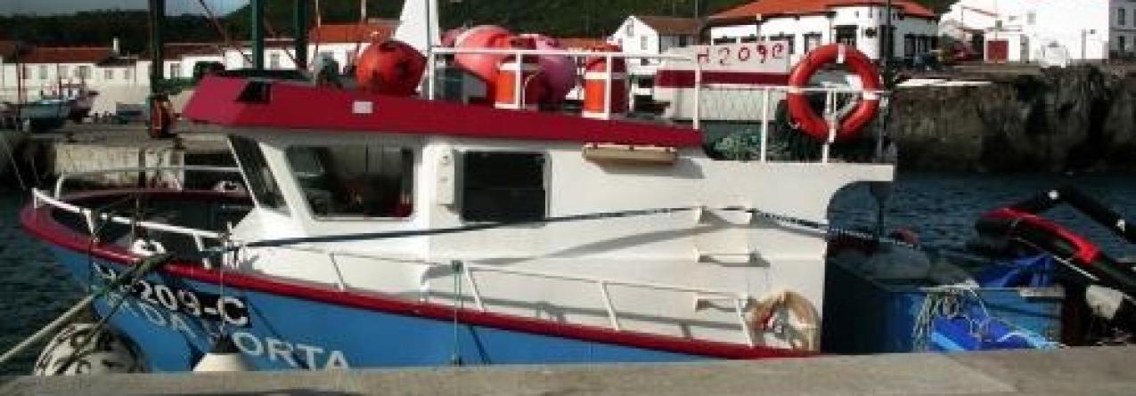 Detidos os três indivíduos que roubaram embarcação do porto da Horta
