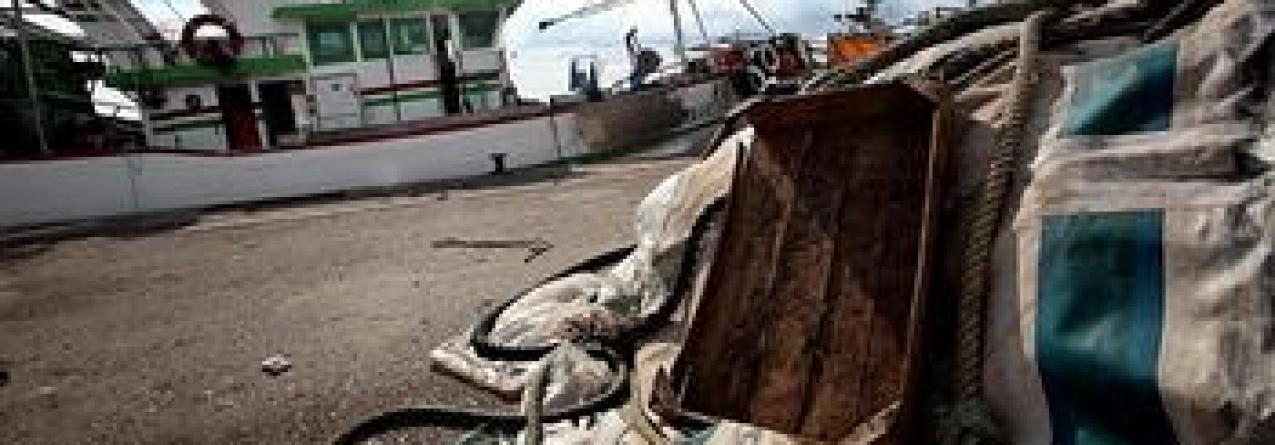 Dois barcos espanhóis retidos na Figueira da Foz por pesca ilegal