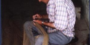 Aníbal Pires alerta para precariedade da relação laboral dos pescadores da pesca artesanal