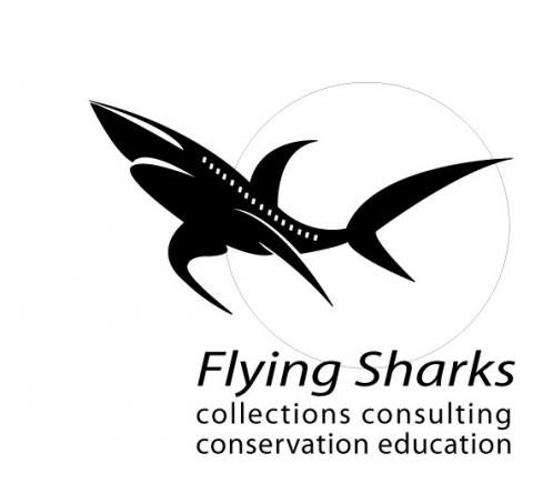 Flying Sharks espera faturar meio milhão de euros em 2012 a transportar peixes vivos para todo o mundo