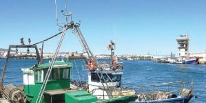 Pesca no Algarve com maior quebra do País