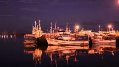 Pescado apreendido entregue a instituições de solidariedade
