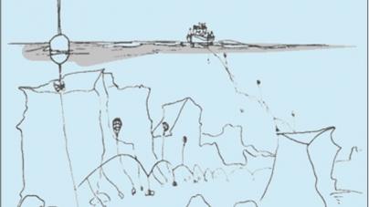 Pescadores dos Açores querem limitar pesca com palangre