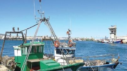 Frota portuguesa opera num regime sustentável