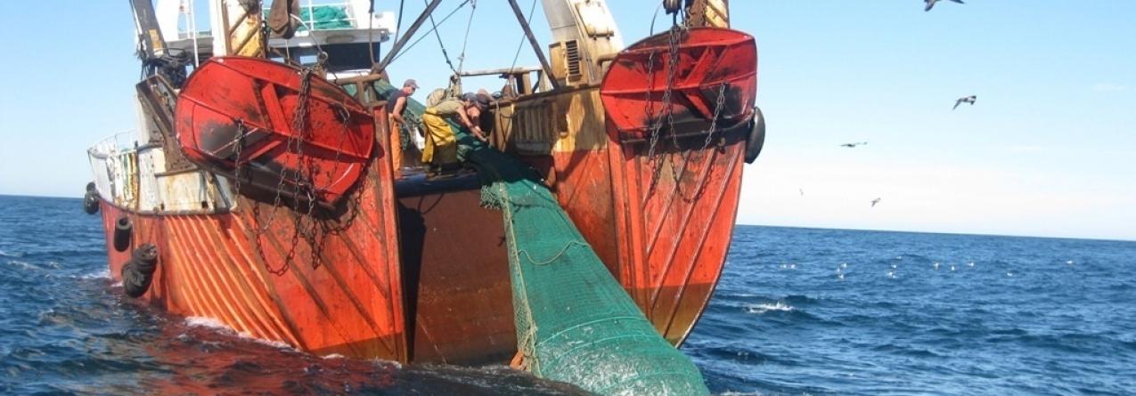 Comando Local da Polícia Marítima da Figueira da Foz evita delapidação de recursos