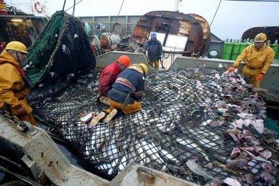 O compromisso da pesca sustentável na Noruega