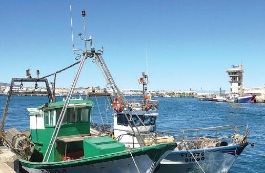 Série Mar Português: pesca, um mar de oportunidades perdidas