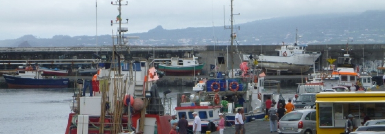 FundoPesca atribui apoio de 254 euros a 1.400 pescadores açorianos