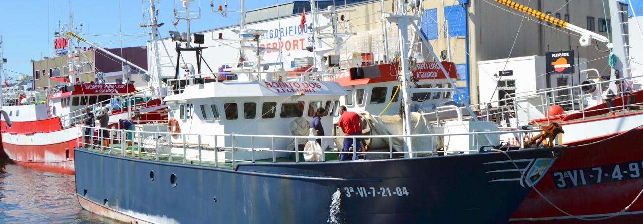 Armadores pedem grupo de trabalho para analisar futuro da frota palangreira de superfície