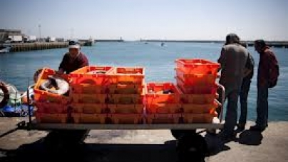 Peixe transaccionado em lota caiu 7% em volume, mas aumentou em valor