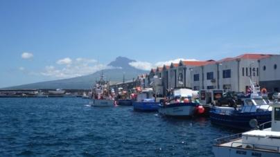 BE denuncia atrasos nos apoios aos pescadores para compra de gasóleo
