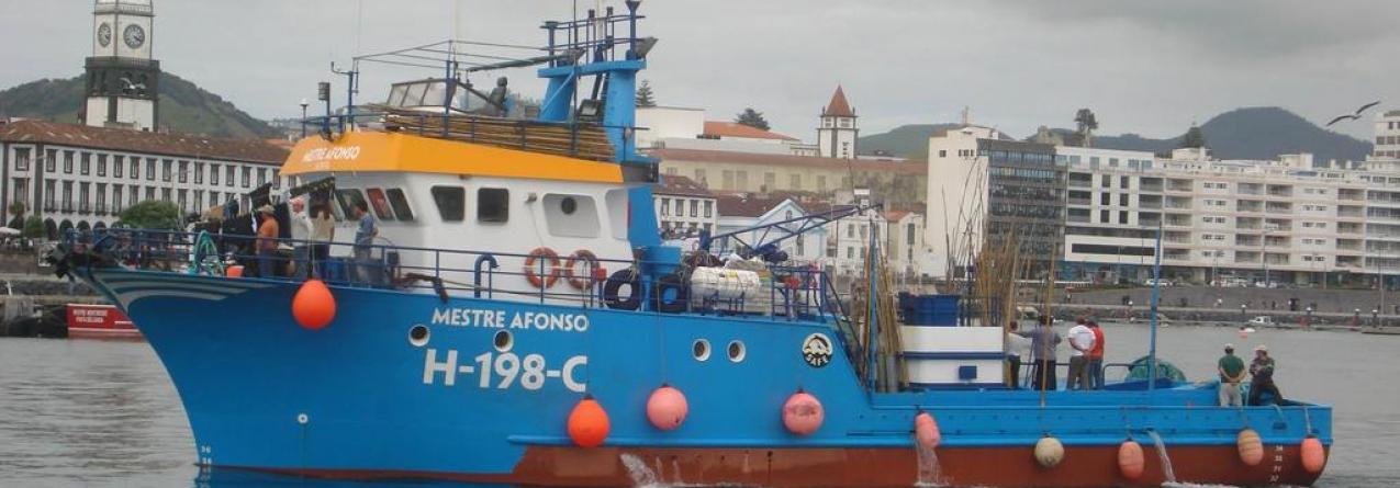 Santa Catarina vende atuneiro