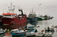 """Sindicato dos Pescadores dos Açores diz que a ativação do Fundopesca é """"uma emergência"""""""