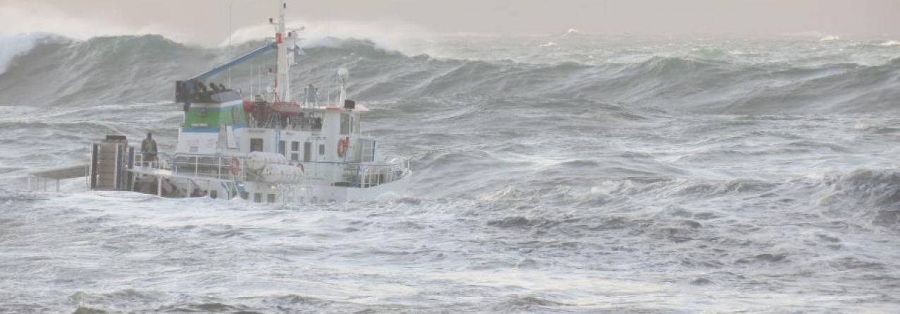 Pesca cai 44% e pescadores perdem cerca de três milhões de euros