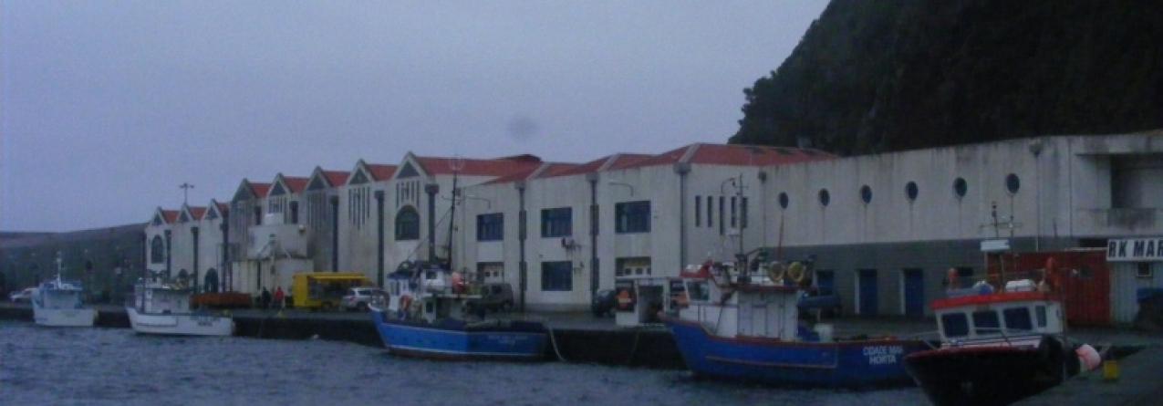 """Apontadas """"omissões"""" na Estratégia Nacional para o Mar em relação aos Açores em sessão pública"""