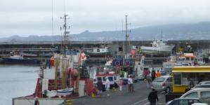 O que está em causa na nova política europeia de pescas
