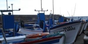 Mais 1.556 pescadores inscritos nos últimos dois anos nos Açores