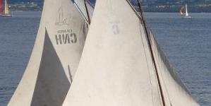 Antigos baleeiros contam histórias de aventura e adrenalina da caça ao cachalote nos Açores