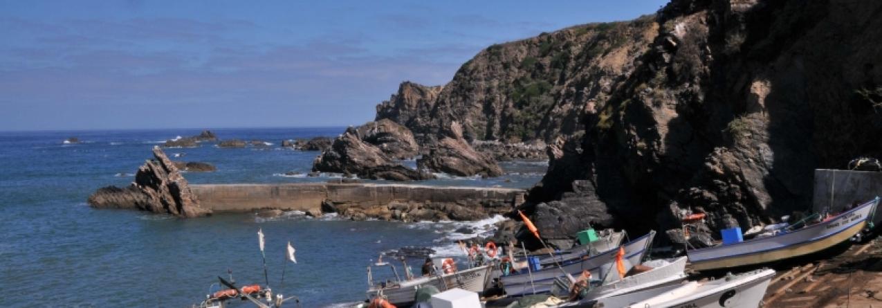 Odemira assina protocolo para implementar venda direta entre pescadores e consumidores