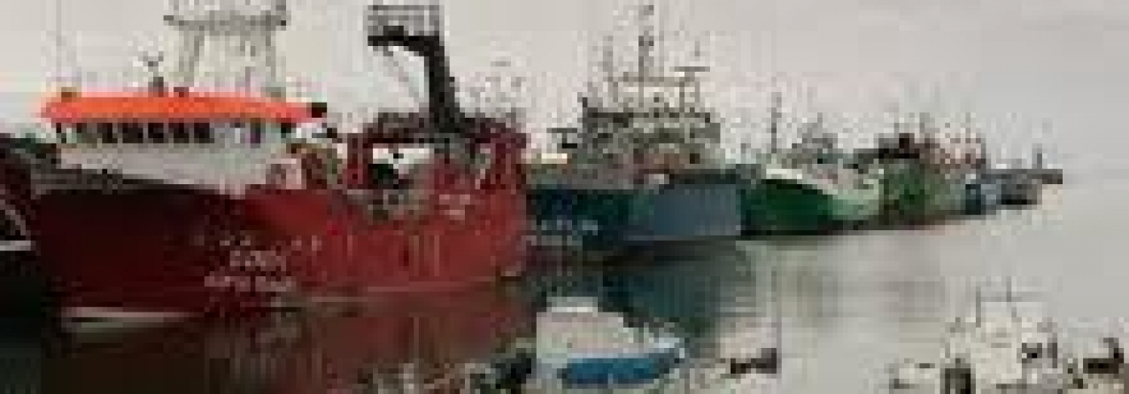 Pescadores dos Açores afirmam ter recuado 20 anos em termos de rendimento
