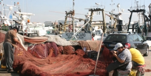 Pesca da sardinha: barcos em terra e pescadores à deriva