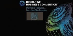 Açores querem atrair empresas de biotecnologia marinha para exploração dos recursos do mar profundo