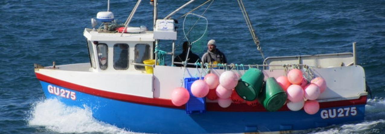 Portugal devia apostar no mar, mas faltam marinheiros