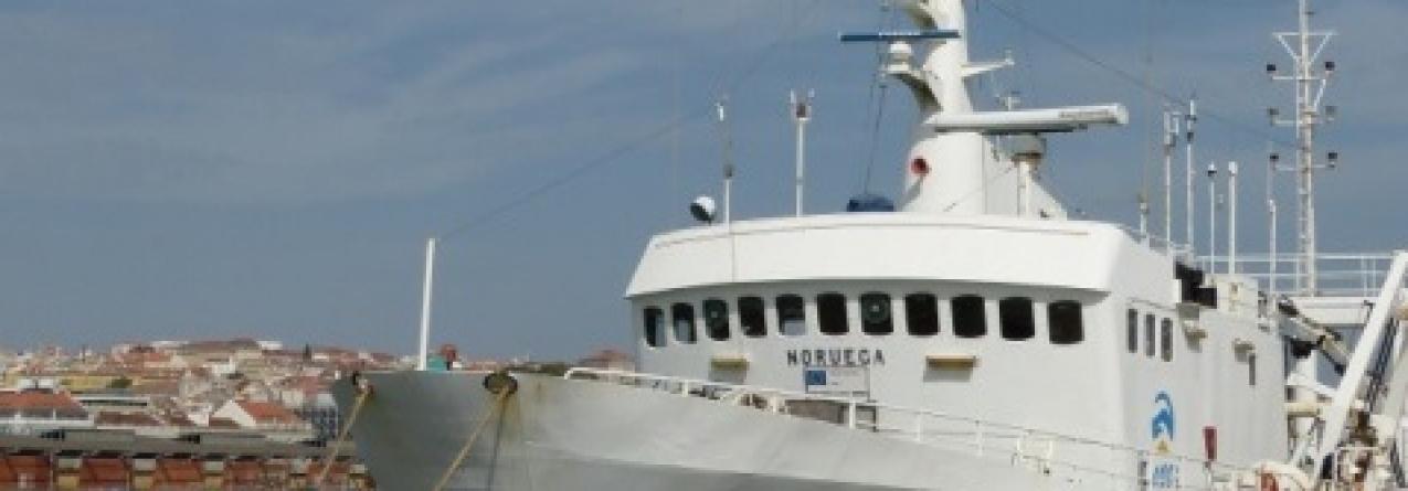 IPMA vai ter novo navio de investigação