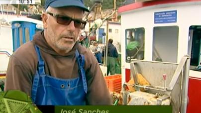 Boas práticas de pesca na costa portuguesa (video)