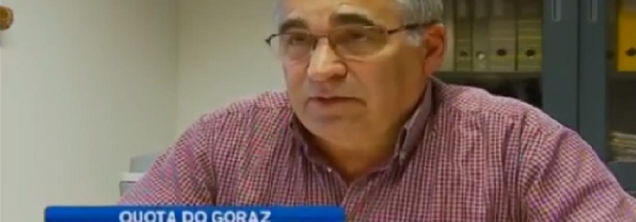 Pescadores descontentes com novos limites à captura de goraz (vídeo)
