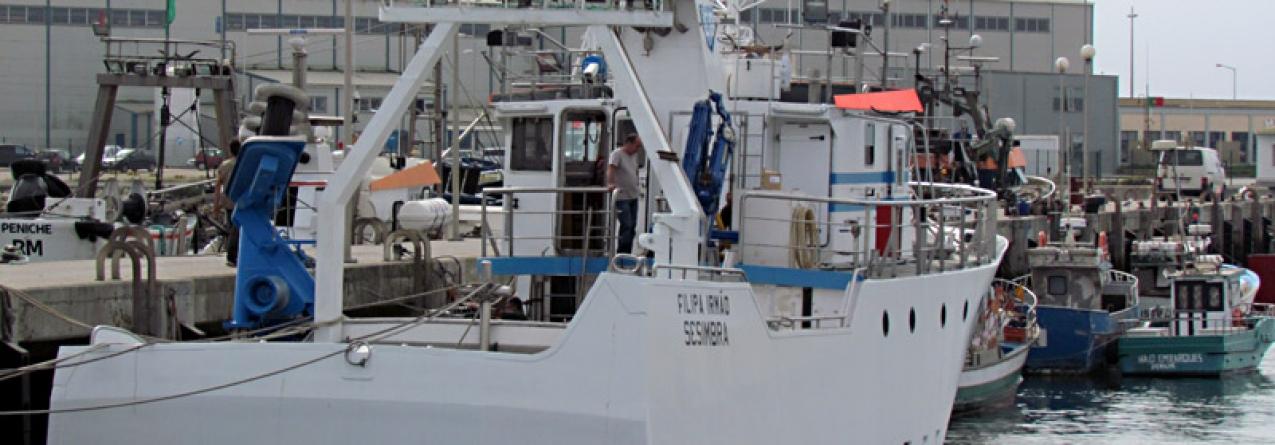 Estratégia Nacional para o Mar: Investimento de 27 milhões no porto de Peniche