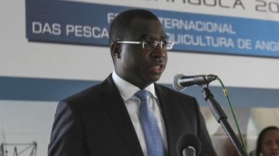 Portugal e Angola vão promover plano de ação para o setor das pescas