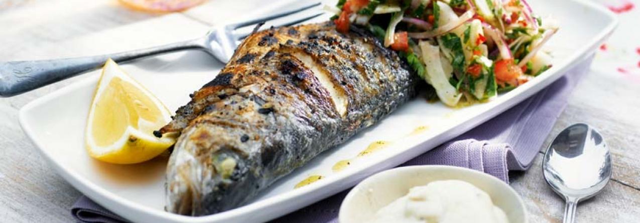 """Temos """"o melhor peixe do mundo"""". E conseguimos comê-lo?"""