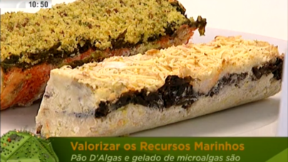 Peniche – novas utilizações para as algas (video)