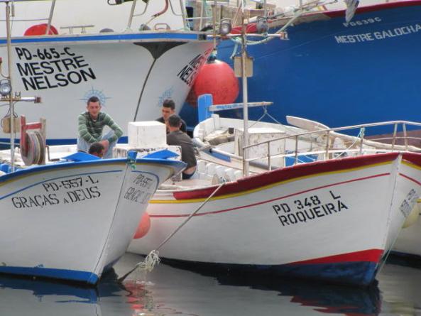 Sindicato critica ativação do Fundopesca nos Açores apenas para duas ilhas